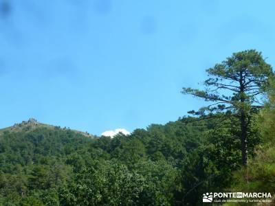 Pinares Angostura, Piedralaves; viajes senderismo madrid;viajes agosto;excursiones semana santa
